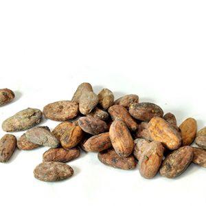 Fèves de cacao Brut