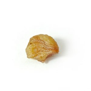 Marrons glacés rompus
